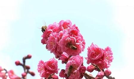 아름다움을 간직한 마음 속에 '생명의 은혜'가 담기는 것이다